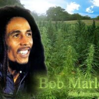 Bob Marley Birth Place Tour