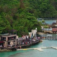 Dolphin Cove Jamaica Tours