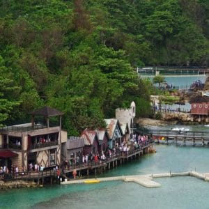 Dolphin Cove Jamaica Tours