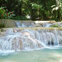 Eco Tour Enchanted Gardens
