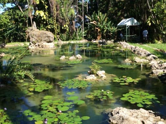 Enchanted Garden: Eco Tour Enchanted Gardens Private Transfer