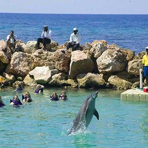 jamaica-get-away-travels-dolphin-cove-2