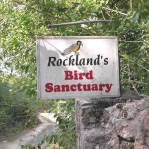 rocklands-bird-santuary-jamaica