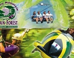 Zip Line Adventure Jamaica Tours