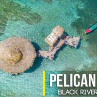 The Pelican Bar Treasure Beach Jamaica