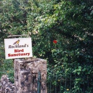 jamaica-get-away-travels-rockland-bird-sanctuary
