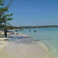 whistling-bird-negril-private-transfers-from-montego-bay-airport-