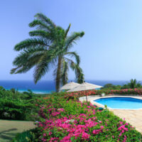 Montego Bay Private Airport Transfers To Nutmeg South Villa