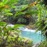 Cranbrook Flower Garden Nature Tour - enjoy the serenity and breathtaking tropical rainforest and be apart of nature.