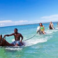 Explore Jamaica's North Coast on Horse Back when you book the Heritage Beach Horse Ride Tour from Ocho Rios.You will visit Seville Great House and Heritage Park that houses a wealth of historical and cultural artifacts.