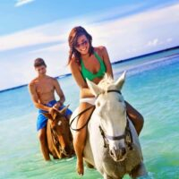 Come and explore Jamaica beautiful countryside on a horse back.Ride through the tropical forest on top of a gentle mare or a serene stallion.