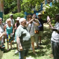 You will get to visit Johns Hall Basic School and be entertained by the children with their songs and folklore.Stroll along the Johns Hall Estate and get to sample fruits and fresh coconut water.
