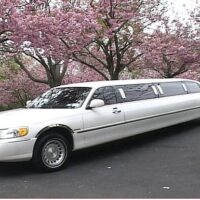 With our affordable Limousine private transfer, we are available 24 hours a day 7 days a week to help with all inquiries. Our goal is to always exceed all your expectations.